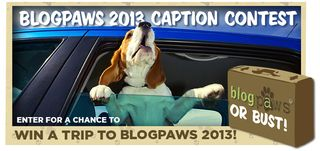 Blogpaws_or_bust_2013-1
