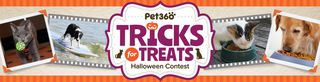Pet360 TricksforTreats_photo_entry_banner