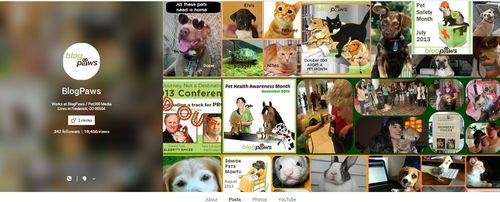 Blogpaws google hangouts