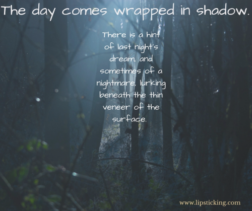 The day comes wrapped in shadow.