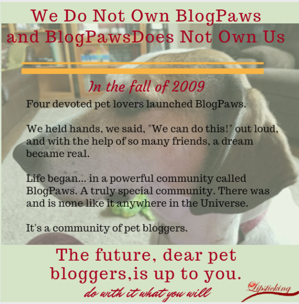 BlogPaws does not own us