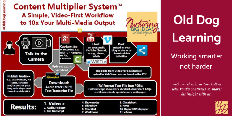 Old dog learning content multiplier system