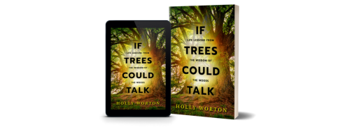 If trees could talk cover image