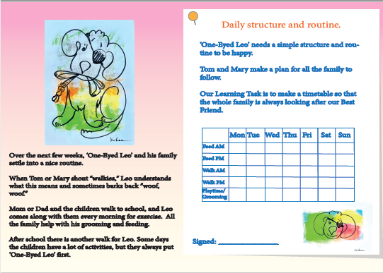 Daily structure and routine